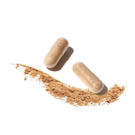 Antioxydant en gélules