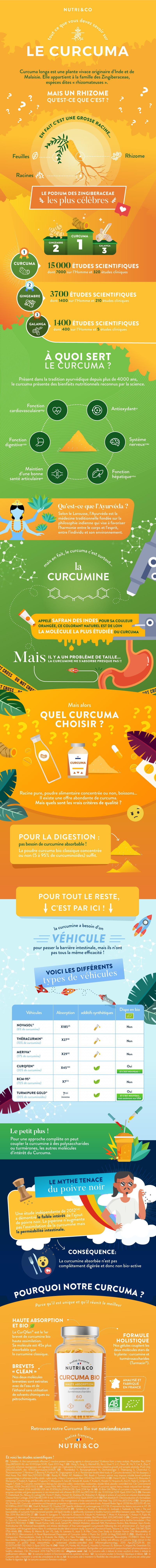 Infographie curcuma