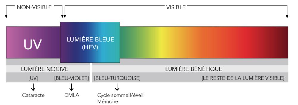 Spectres lumière